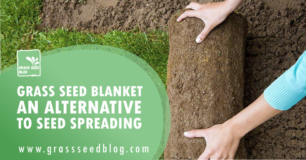 Grass Seed Blanket - An Alternative To Seed Spreading
