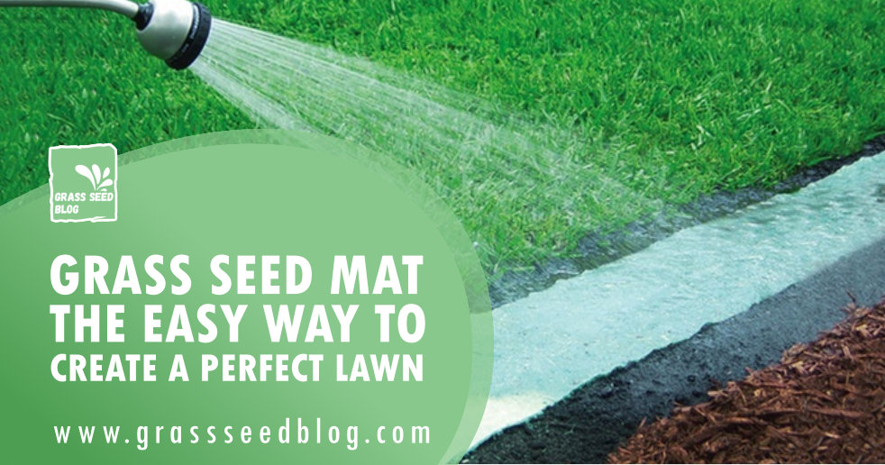 Grass Seed Mat - The Easy Way To Create A Perfect Lawn