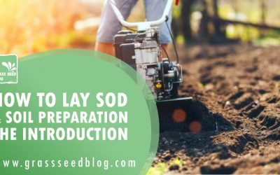 How To Lay Sod & Soil Preparation – The Introduction