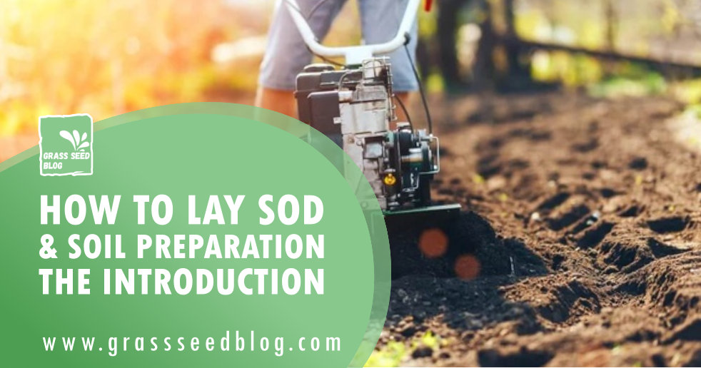 How To Lay Sod & Soil Preparation - The Introduction