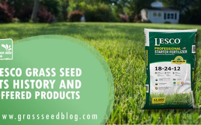 Lesco Grass Seed – Its History and Offered Products